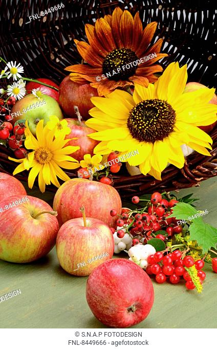 Apples and flowers in a basket