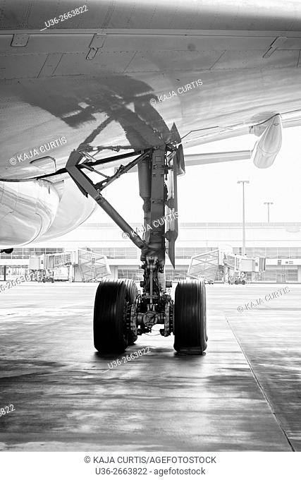 Airplane wheels, Václav Havel Airport, Prague, Czech Republic