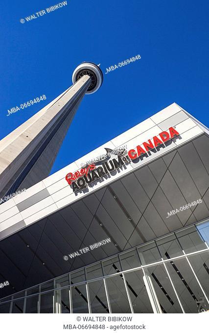 Canada, Ontario, Toronto, Harbourfront, CN Tower and Rileys Aquarium