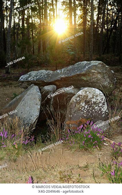 Dolmen of Pedra da Arca. Malpica de Bergantiños, Galicia, Spain