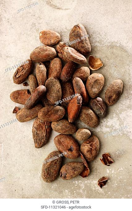 Cocoa beans (seen from above)