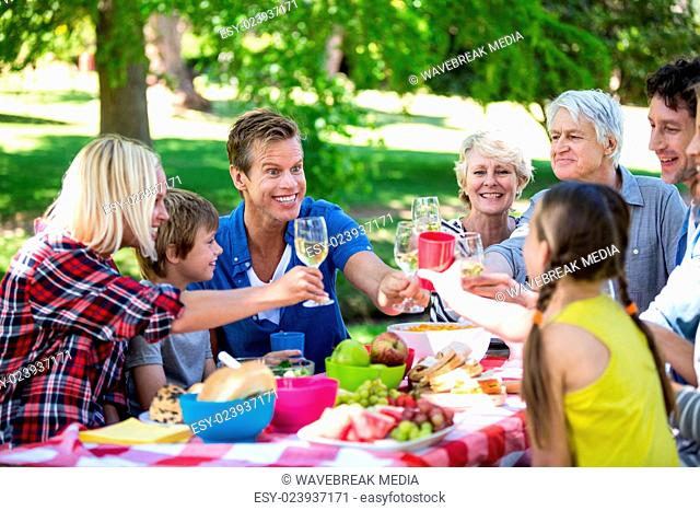 Family and friends having a picnic
