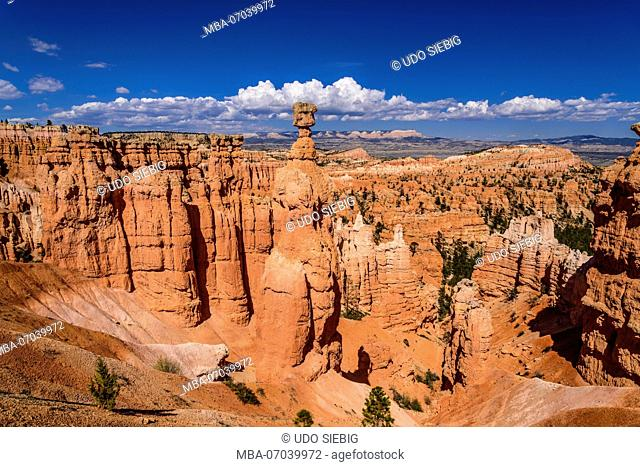 USA, Utah, Garfield County, Bryce Canyon National Park, amphitheater with Thor's Hammer, view from Navajo Loop Trail