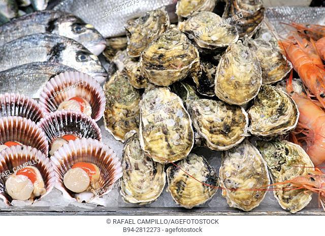 Sea food. Pectinidae (Pectinidae), commonly known as scallops, oysters and fish, Mercat de Sant Josep aka La Boqueria Market, La Rambla, Ciutat Vella district