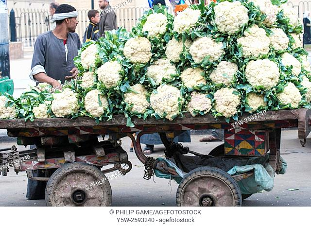 A horse-drawn cart full of cauliflowers, Fustat, Cairo
