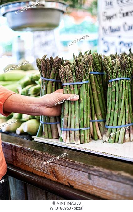 Close up of human hand holding bunch of fresh green asparagus at a fruit and vegetable market