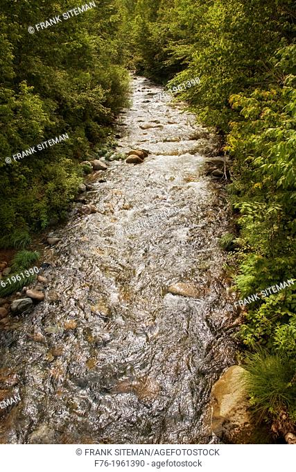 Garland Brook in Norther New Hampshire's White Mountains, gushes with water after a sudden summer rainstorm