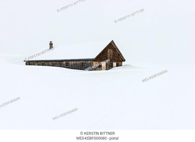 Switzerland, Canton of St. Gallen, Alp near Toggenburg, alpine cabin in winter