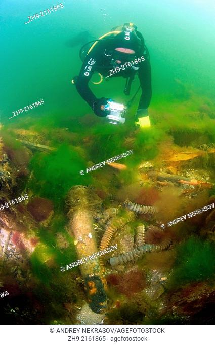 "Underwater wreck - mine trawler """"Collective farmer"""", submerged on the Black sea in Ukraine"