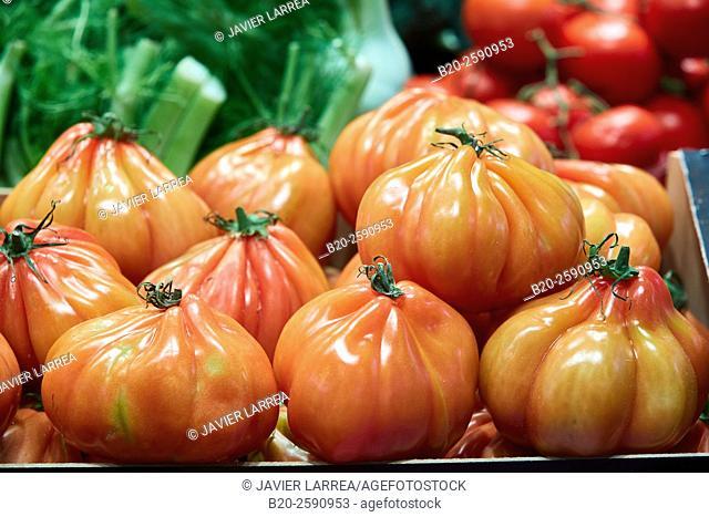 Tomatoes, Mercat St Josep, La Boqueria market, Las Ramblas. Barcelona. Catalonia. Spain