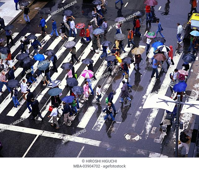 Crosswalks, pedestrians, umbrellas, top view, city, urban, street, street-transition, pedestrian crossing, people, passers-by, umbrellas, rain, rainy