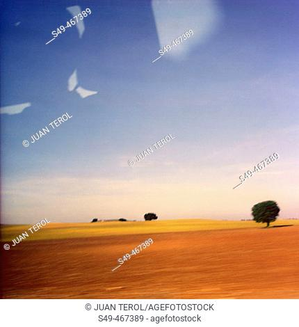 Rural landscape. Castilla-La Mancha. Spain