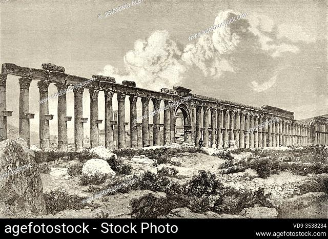 Colonnade of the Decumanus Maximus, archaeological site of Palmyra, Syria. Middle East, Journey to Palmyra 1872, by Lydia Paschkoff