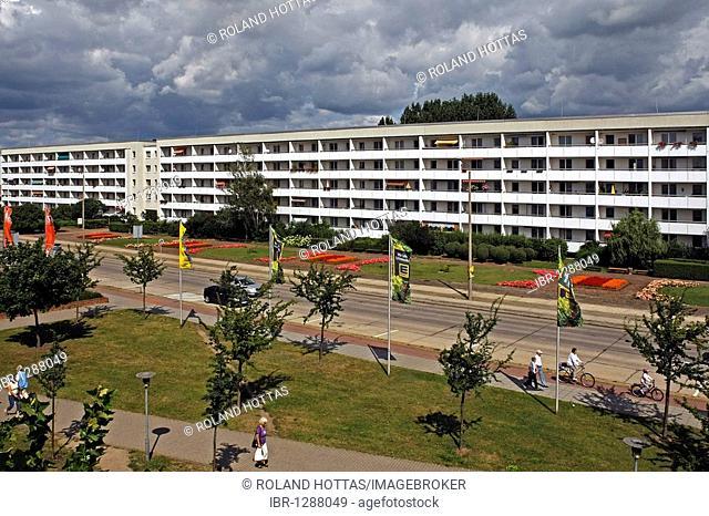 Homes in the new town of Lubbenau, Spreewald, Brandenburg, Germany, Europe