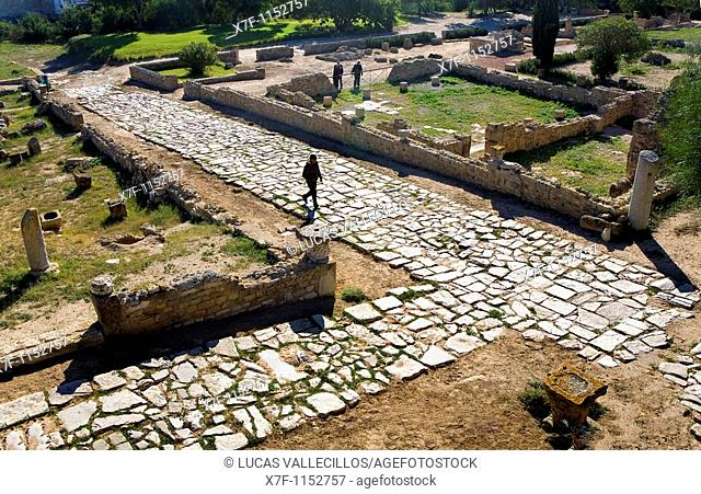 Tunez: Carthage Roman Villa of the Aviary Roman causeway