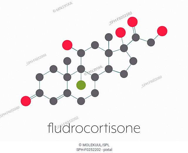 Fludrocortisone aldosterone hormone substitution drug molecule. Stylized skeletal formula (chemical structure). Atoms are shown as color-coded circles connected...