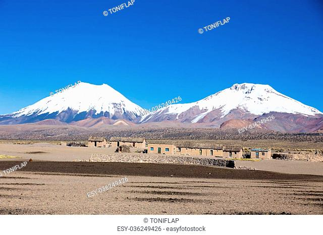 Parinacota and Pomerade volcanos. High Andean tundra landscape in the mountains of the Andes. The weather Andean Highlands Puna grassland ecoregion