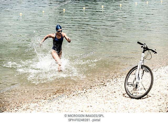 Triathlete in training. Running out of the water towards bicycle