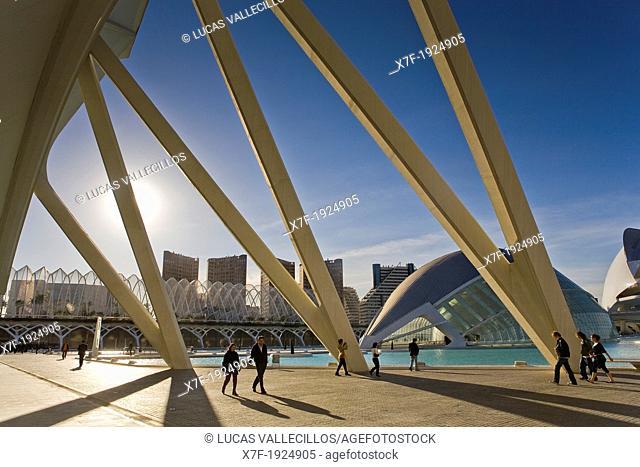 The Hemisferic from Príncipe Felipe Sciences Museum, City of Arts and Sciences, by S  Calatrava  Valencia  Spain