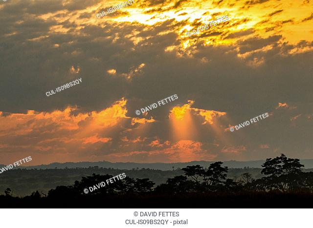 Morning in Entebbe, Kalangala, Uganda
