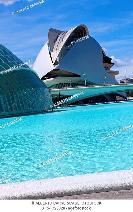 Palace of Arts Reina Sofía, City of Arts and Sciences, Valencia Comunity, Valencia, Spain, Europe