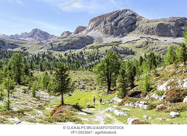 Italy,South Tyrol,Bolzano district,San Vigilio di Marebbe,The characteristics layers of Mount Sass da Bech