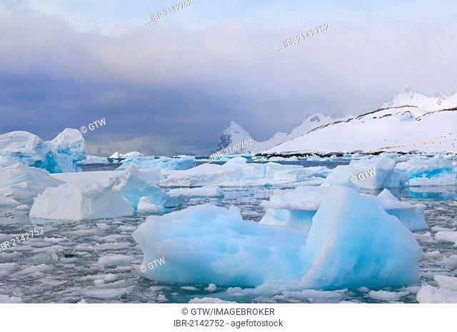 Floating ice, Cuverville Island, Antarctic Peninsula