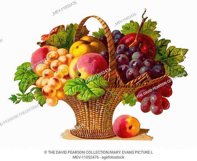 Basket of fruit on a Victorian scrap