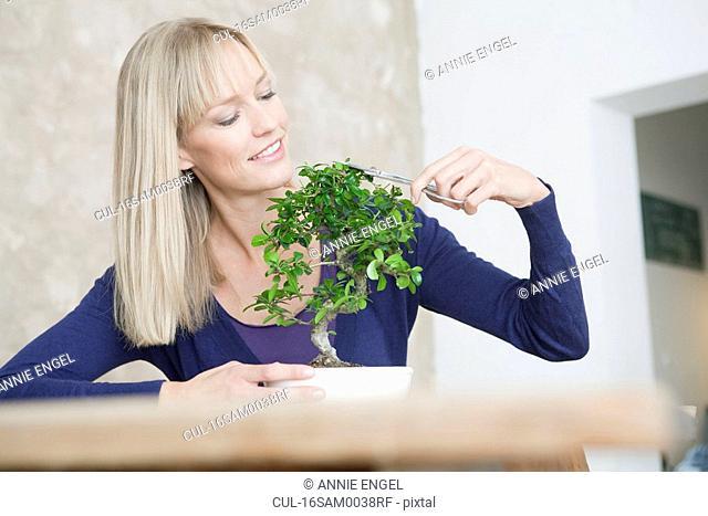 woman with bonsai