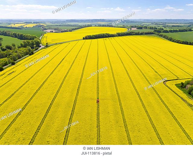 Aerial Of Tractor Spraying Oilseed Rape Crop With Pesticide