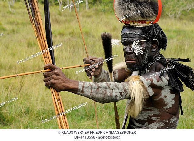 Fight ritual, Dani, warrior, Yiwika, Baliem Valley, Irian Jaya, New Guinea, West Papua, Indonesia, Southeast Asia, Asia