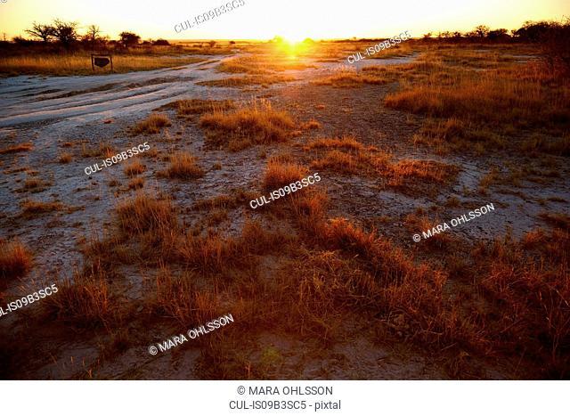 Sunset over plain landscape, Namibia, Africa
