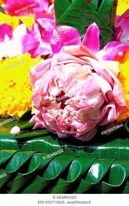 lotus on banana leaf handmate for Loy Kratong festival, Thailand