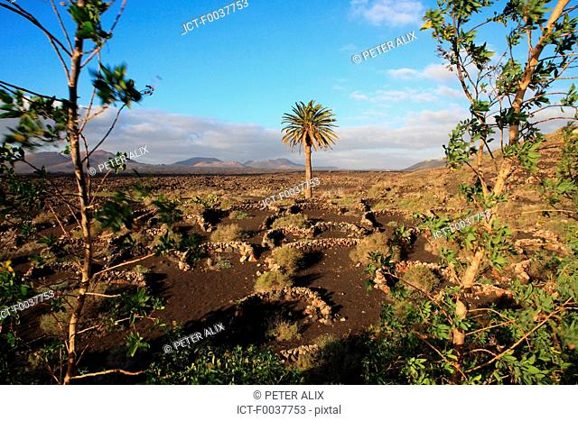 Spain, Canary islands, Lanzarote, National park of Timanfaya
