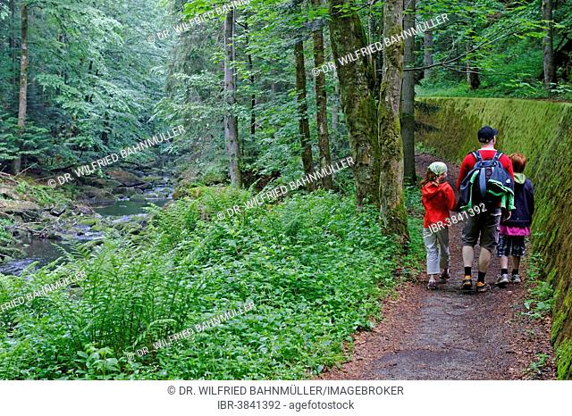 Hikers in the Wildbachklamm Buchberger Leite geotope, Wildbachklamm gorge, Bavarian Forest, Lower Bavaria, Bavaria, Germany