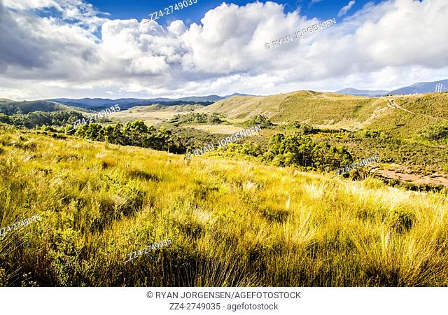 Expansive Scenic of Mountains and Valley Covered in Long Grass Underneath Blue Sky with White Clouds, Parting Creek Regional Reserve, Zeehan, Tasmania