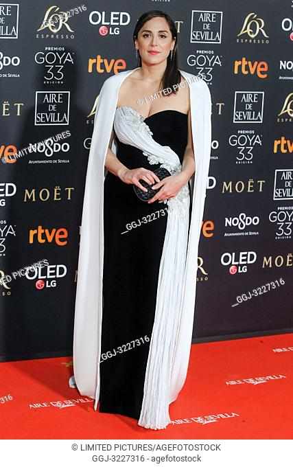 Tamara Falco attends the Spanish Cinema awards Goya 33rd edition at FIBE attends 33rd Goya Cinema Awards 2019 at Palacio de Congresos y Exposiciones FIBES on...