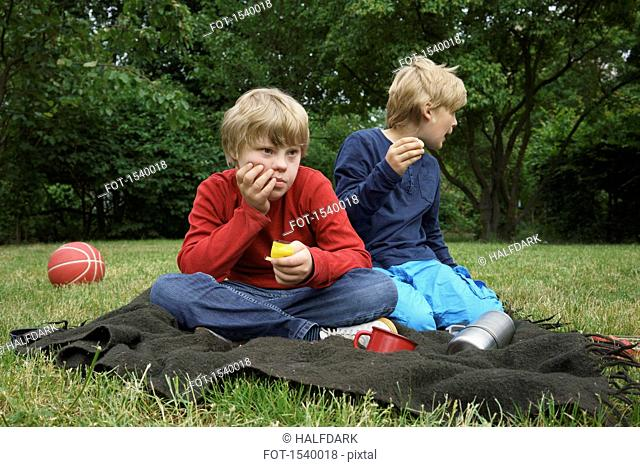Brothers sitting on blanket in park