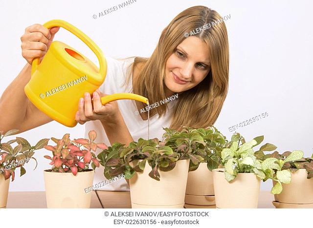 Young girl Europeans care and watering potted plants Fitton