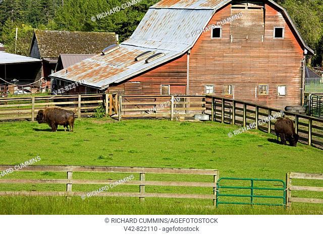 Barn on Whidbey Island, Washington State, USA