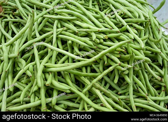 Singapore, Republic of Singapore, Asia - Fresh green beans are sold at a street market in Little India