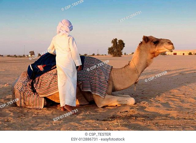 boy and a camel in the desert