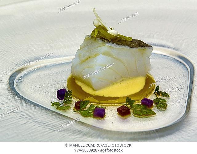 Plato de Bacalao cocinado a baja temperatura (Cod cooked at low temperature). Restaurant Palacio de Larrea. Baracaldo, Biscay, Basque Country, Spain