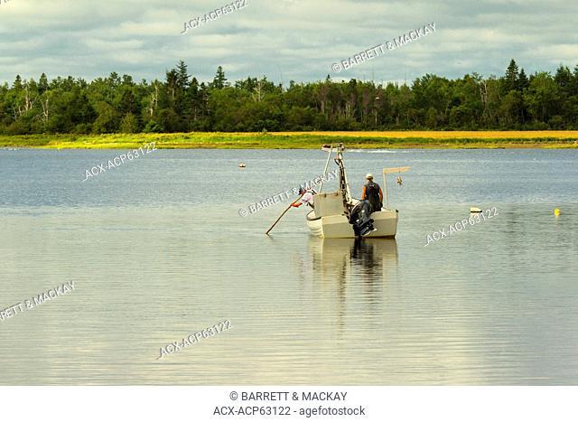 Harvesting, Mussells, Milligans Wharf, Prince Edward Island, Canada