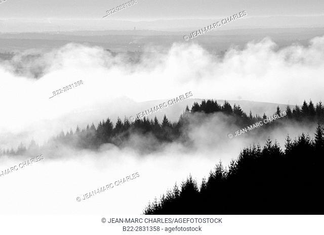 Foggy landscape, region of Campuac, North-Aveyron, Midi-Pyrénées, Occitanie, France