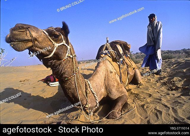 during a safari camping in the Thar Desert, Rajasthan, India 2004