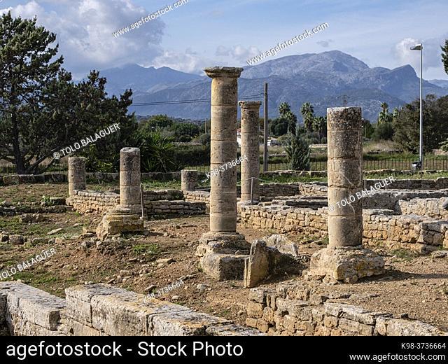 Roman city of Pollentia, Alcudia, Mallorca, Balearic Islands, Spain
