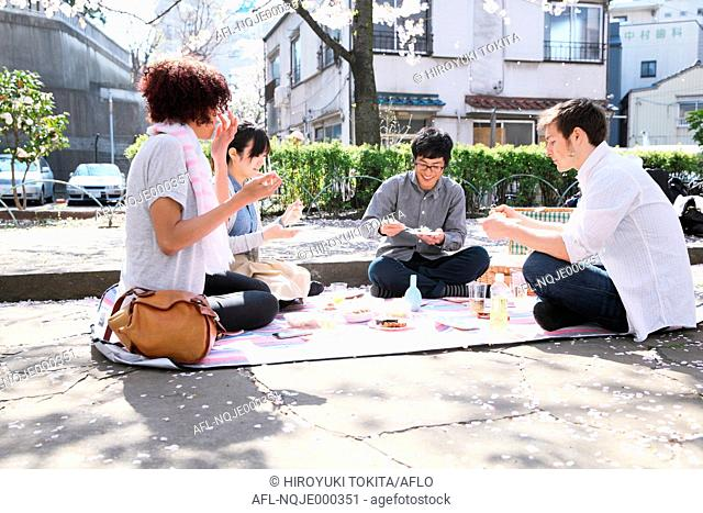 Multi-ethnic group of friends enjoying cherry blossoms blooming in Tokyo