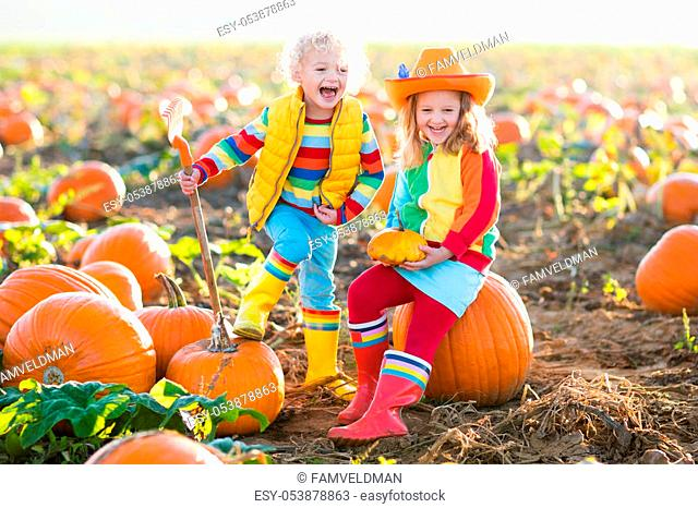 Little girl and boy picking pumpkins on Halloween pumpkin patch. Children playing in field of squash. Kids pick ripe vegetables on a farm in Thanksgiving...