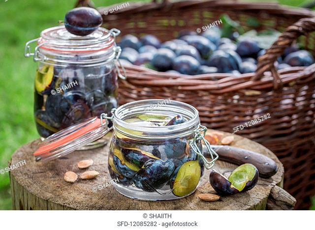 Preserved plums in a preserving jar on a tree stump in the garden